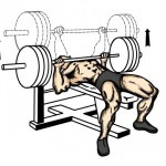 упражнений для набора мышечной массы