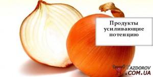 1396937736_yvelichenie-potencii-3